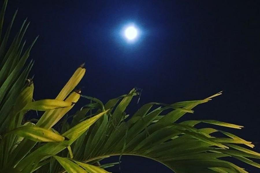 Önskar godnatt från andra sidan jorden, delar med mig av fullmånen och hoppas ni har en fantastisk dag! Kram ️#fullmåne #andrasidanjorden #världen #livet #kärlek #kram